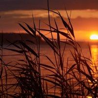 Закат на озере Волго :: tuman t