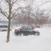 Среди зимы внезапно выпал снег... :: Владимир