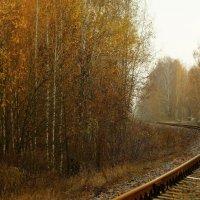 Осеннее ... :: Игорь Малахов