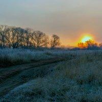 К восходу солнца :: Юрий Стародубцев