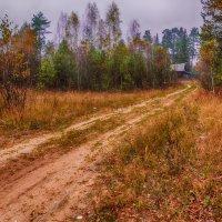 Развилка-Пойдешь направо -к старому, налево-неизвестность... :: Алексей Солодков
