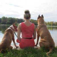 Три девицы у пруда... :: Ольга ОК Попова