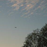 А ты, улетающий вдаль... вертолет.. :: Леонид