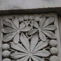 Каменный каштан :: Марина Домосилецкая
