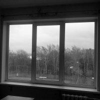 Окно в осень :: Юлия Харланова
