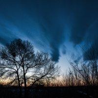 Холодный вечер :: юрий Амосов