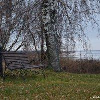 Осень серая :: Алена Смирнова