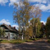 Сельская осень :: kolyeretka