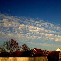 небо: ноябрь после полудня :: Александр Прокудин