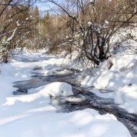 Река Олха :: Анатолий Иргл