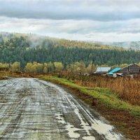 Дорога в деревню :: Дмитрий Конев