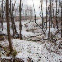 Течет река :: Владимир Новиков