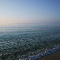 Даль морская :: Swetlana V