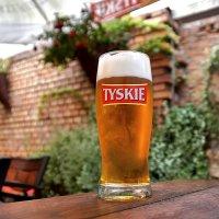 "Пиво ""Tyskie"" в краковском ланч-баре ""Kwadrans"" :: Денис Кораблёв"