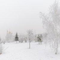 Ноябрь в парке. :: Евгений Герасименко