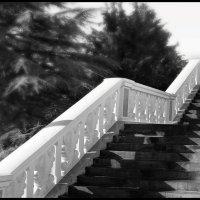 лестница 48 года, Тбилиси :: meltzer
