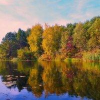 Краски осени :: Валентина Данилова