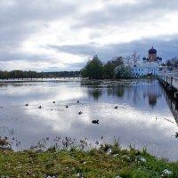 Осенний пейзаж :: Татьяна Белогубцева