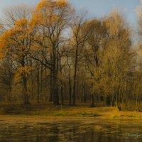 Уж осень отряхает последние листы :: Наталья Лакомова