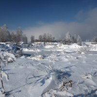 Еще трава не вся под снегом и землю можно разглядеть... :: Александр Попов