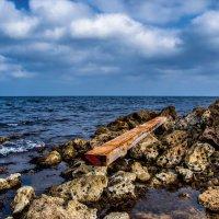 Дары моря :: Виктор Фин
