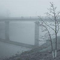 В тумане :: Дмитрий