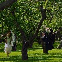 А, ну эту свадьбу!:) Я еще так молод!!! :: Алла Кулиняк