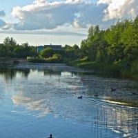 гляжу в озёра синие... :: Елена