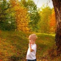 Осень.... :: Светлана Мизик