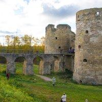 Копорская крепость :: Вера Бокарева