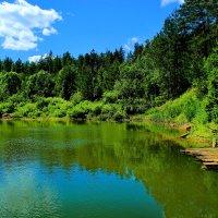 Озеро в лесу. :: Николай Крюков