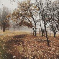 Осень :: Екатерина Дмитренко