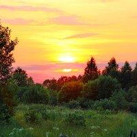 Летний закат. :: Николай Крюков