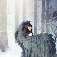 Черная птица :: Светлана
