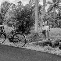 Балийский Дарт Вейдер на пенсии ) :: Александр