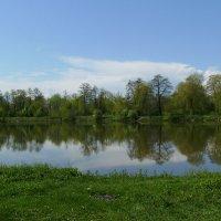 Небольшое  озеро  в  Ивано - Франковске :: Андрей  Васильевич Коляскин