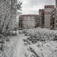начало зимы :: gribushko грибушко Николай