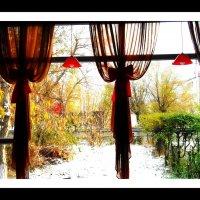 В преддверии зимы :: TATYANA PODYMA