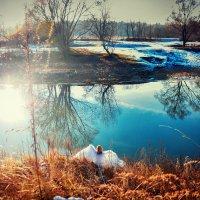 .......... :: photographer Anna Voron
