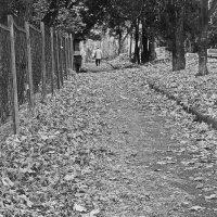 У каждого своя осень..... :: M Marikfoto