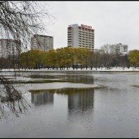 Москва 15.11.2015г. :: Виталий Виницкий