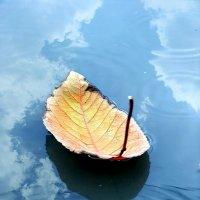 Осенние кораблики :: Юрий Захаров