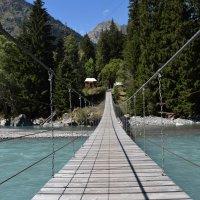 Мост над Тебердой :: Андрей