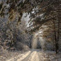 Снежный ноябрь :: Валентин Котляров