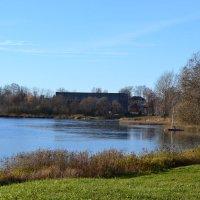 Осень у озера. :: zoja