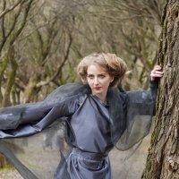 Однажды... в осеннем лесу :: Наталья Rosenwasser