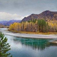 Золотые горы :: Виктор Четошников