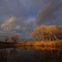 Ноябрьский пейзаж :: Александр Кафтанов