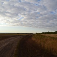 деревенская дорога :: Vlad Pchelkin
