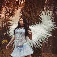 крылья ангела :: Viktor Marvel